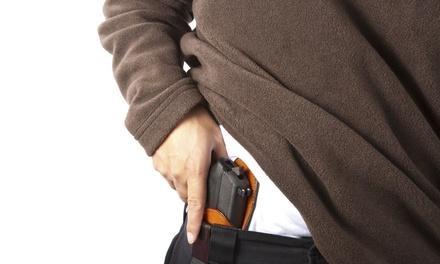 Illinois Conceal Carry, LLC