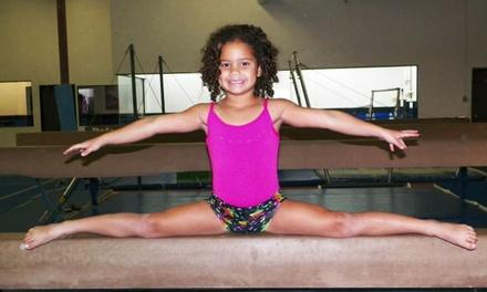Southwest Gymnastics