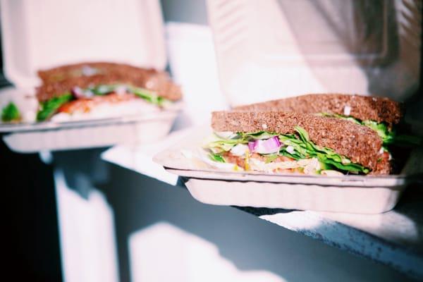 Sandy's Sandwiches