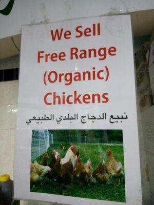 Bisher Market