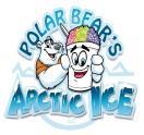 Polar Bear's Arctic Ice
