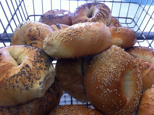 Top Bagels & Deli