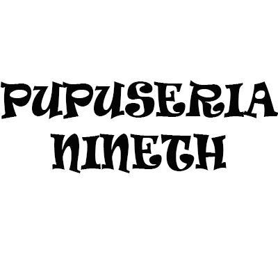 Pupuseria Nineth