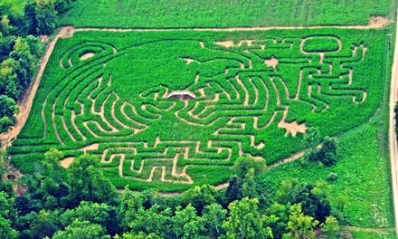 McPeek's Mighty Maze
