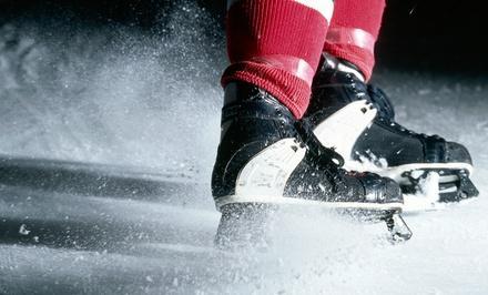 Big 10 Men's Ice Hockey Tournament