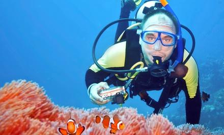 Abyss Scuba & Travel