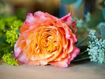 Rittners School-Floral Design