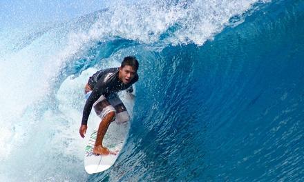 Nex Generation Surf School