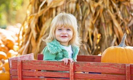 Pa's Pumpkin Patch