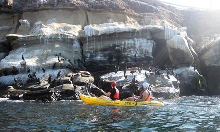 La Jolla Sea Cave Kayaks