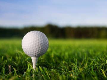 The Golf Academy/LA