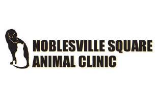 Noblesville Square Clinic