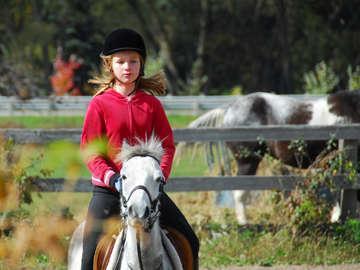 Royal Oaks Equestrian Center