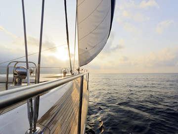 SailNOW!