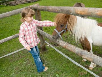 FairyTails Pony Parties