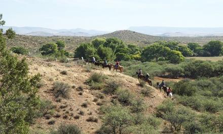 Triangle Y Trail Rides