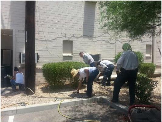 Mike's Swat Team Pest & Termite Control