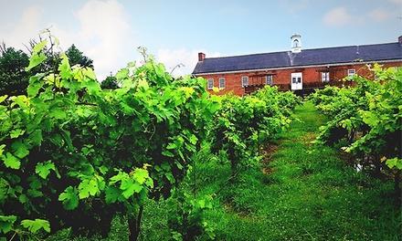 Tidal School Vineyards
