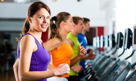 European Fitness Center