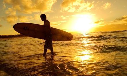 SurfDudeTV.com