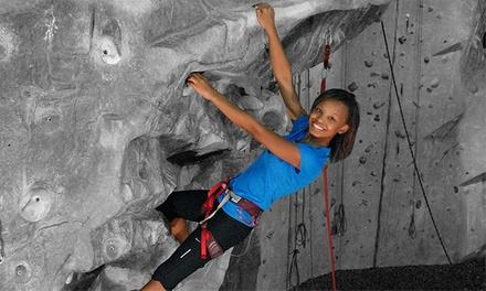 Atlanta Rocks! Indoor Climbing Gym