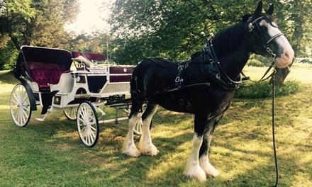 Oklahoma Premier Carriage Company
