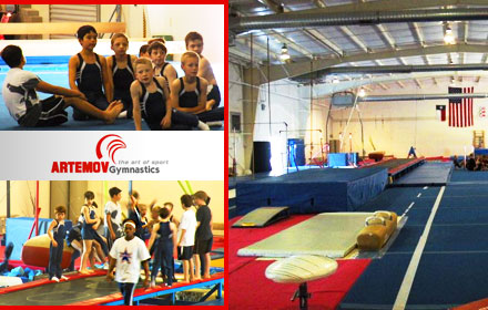 Artemov Gymnastics