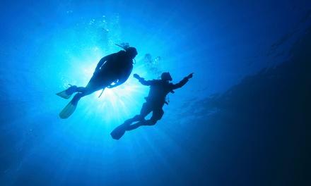 Aqua Zone Scuba Diving & Water Sports Center