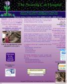 SCAREDY CAT HOSPITAL