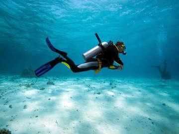 Silent World Diving