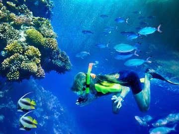 Underwater Phantaseas Lakewood