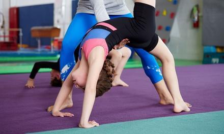 Superior Gymnastics