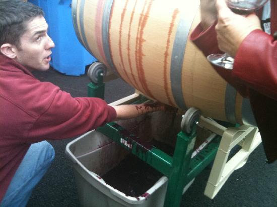 Barrel Wine Tours