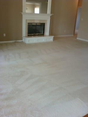 Bio-Fresh Carpet Cleaning