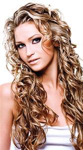 5 Wild Hairs Salon