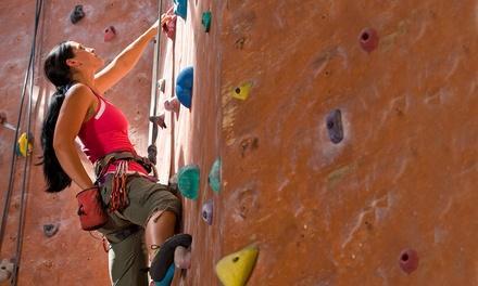 Amarillo Rock Climbing House
