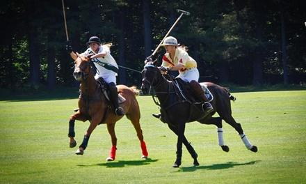 Stage Hill Polo