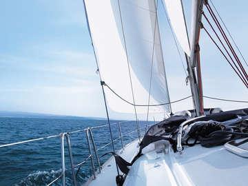 Sail Dallas