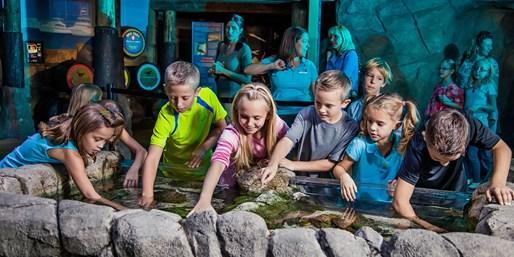Sea Life Arizona Aquarium