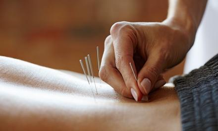 White Phoenix Acupuncture