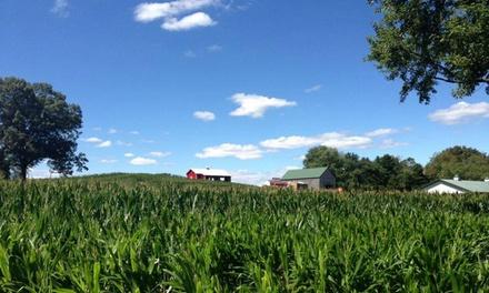 Montpelier Farms