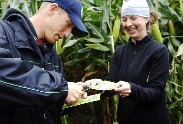 Tews Corn Maze