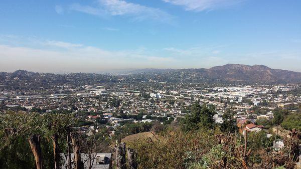 Solano's Tree Service & Landscaping