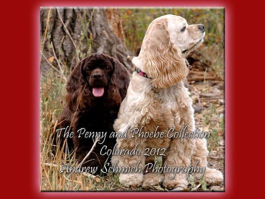 Front Range Pet Care