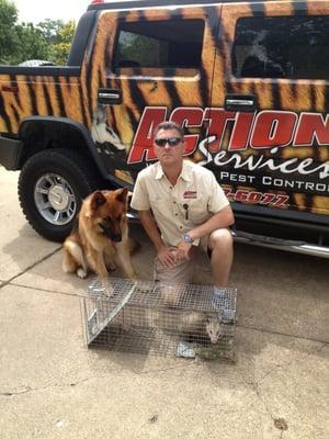 Action Services WildLife & Pest Control