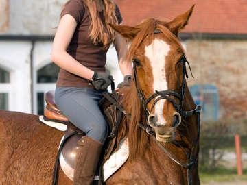 Bella Rosa Riding Academy