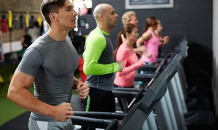 Sweat Fitness
