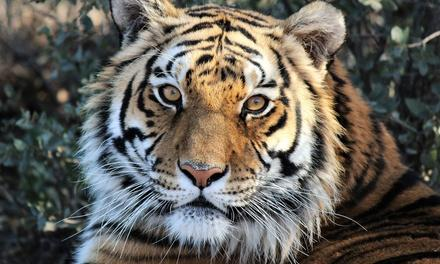 Heritage Park Zoological Sanctuary
