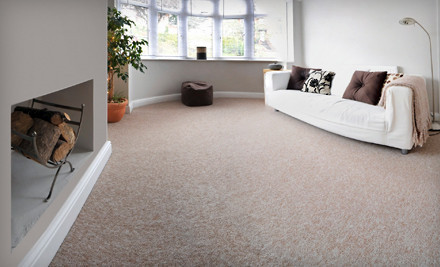 Immaculate Carpet Cleaning & Maintenance