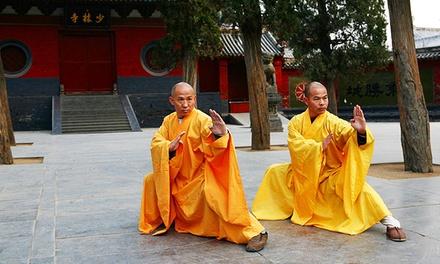 Shaolin Institute